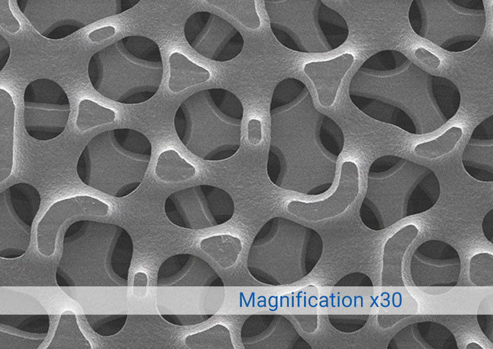 Magnification of Surface Roughness & Porosity x30